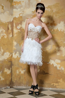 Exquisite 2016 Cocktail Dresses With Feather