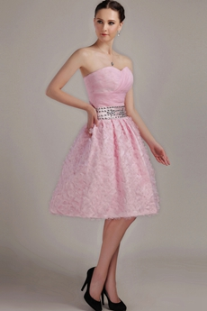 Cute Sweetheart Puffy Pink Short Length Sweet XVI Dress