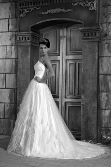 Stunning One Shoulder White Tulle Princess Wedding Dress Woth Feather