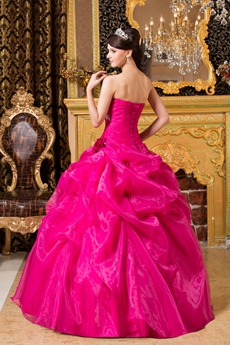 Pretty Sweetheart Ball Gown Organza Fuchsia Quinceanera Dress