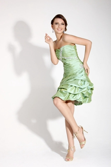 Cute Strapless Sage Homecoming Dress Short Length