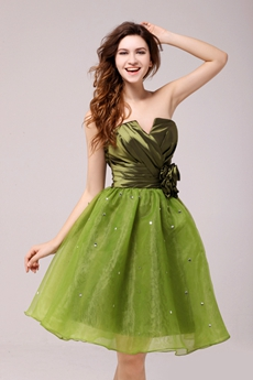 Inexpensive Cowl Knee Length Green Sweet Sixteen Dress