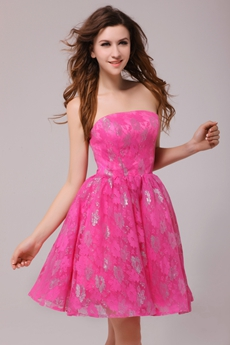 Cute Strapless Mini Length Fuchsia Lace Damas Dress