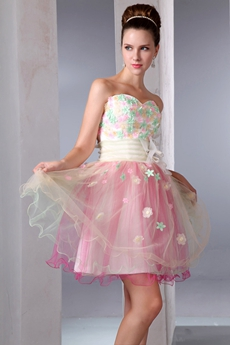Cute Champagne And Pink Tulle Puffy Sweet Sixteen Dress