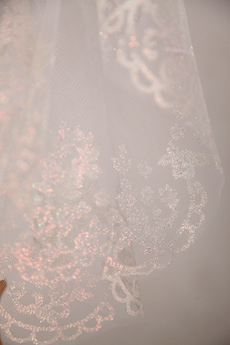 Charming Lace Tulle Wedding Veil