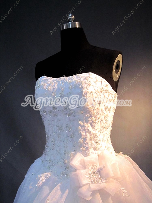 Terrific Ball Gown Bridal Dresses With Lace Appliques