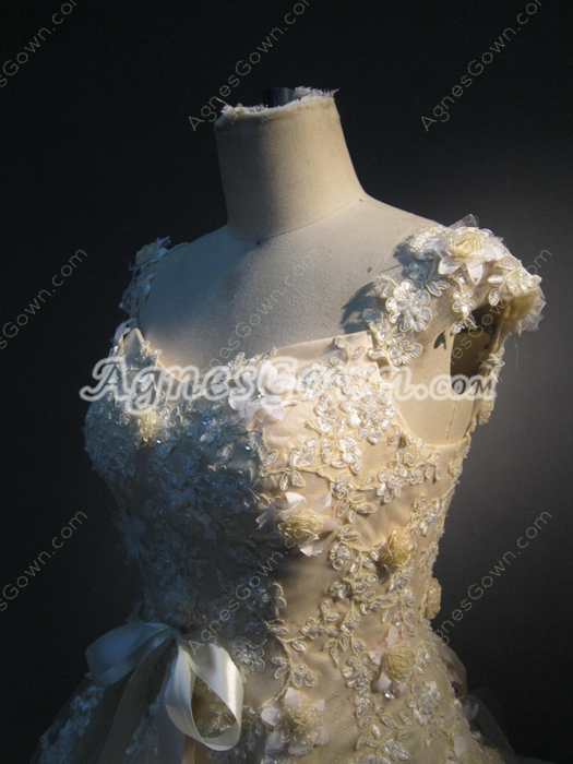 Champagne Floral Princess Quinceanera Dresses With Lace Appliques