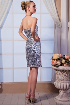 Sparkled Silver Sequined Cocktail Dress