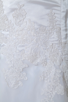 Plunge Neckline A-line Organza Wedding Dress With Lace Appliques