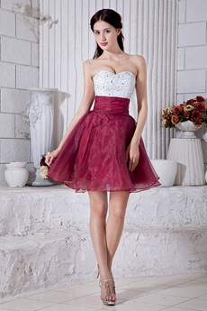 Lovely White And Burgundy Mini Length Damas Dress