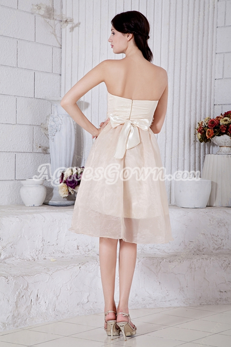 Knee Length Champagne Organza Junior Prom Dress