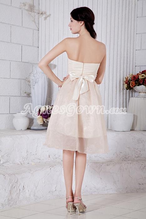 Knee Length Champagne Organza Junior Prom Dress