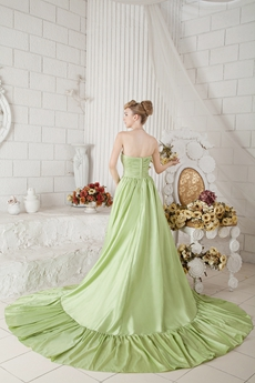 Breathtaking Sage Colored Celebrity Evening Gown
