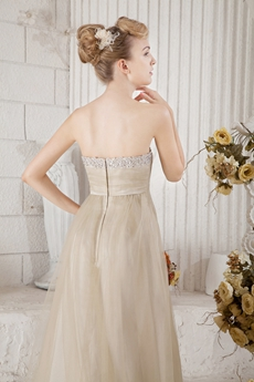 Pretty Beige Tulle Prom Party Dress