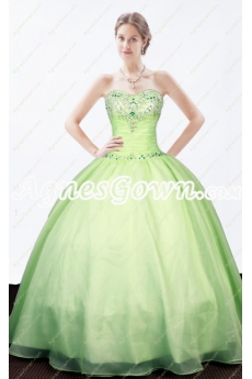 Sweet Sage Color Quinceanera Dress