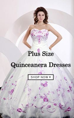 best  Plus Size  Quinceanera Dresses on agnesgown.com